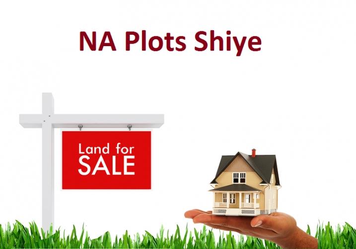 NA Plots Shiye
