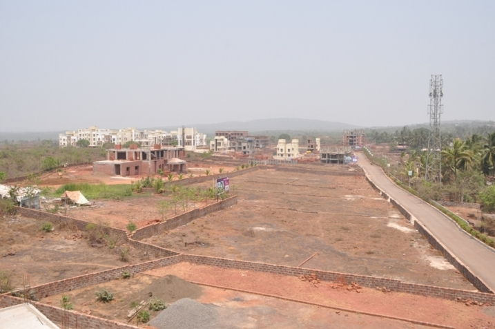 Project Area view